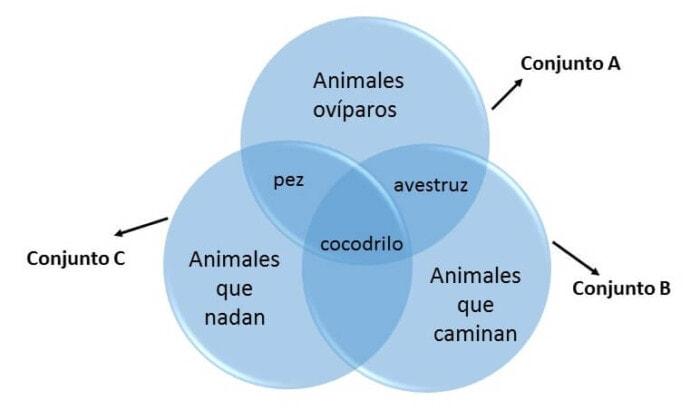 ejemplo dos de diagrama de Venn